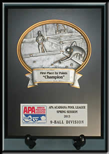 APA Points Champion - 9-Ball Division.